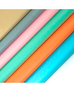 10 Sheets Coloured Tissue Paper